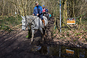 Horses on a bridleway and a sign warning fly-tippers of CCTV coverage on a rural lane in Kent, on 19th March 2019, in Westerham, England.