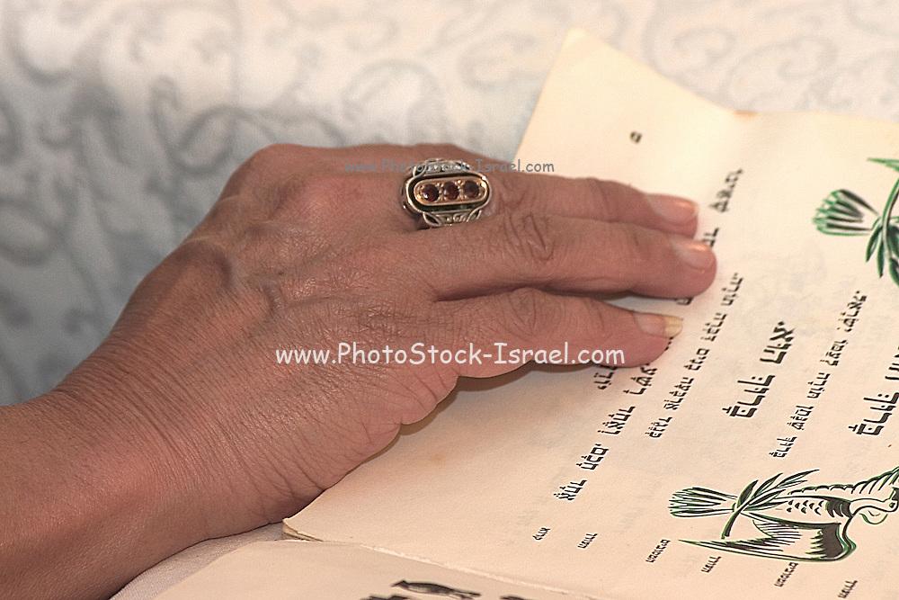 Reading the passover Hagadah