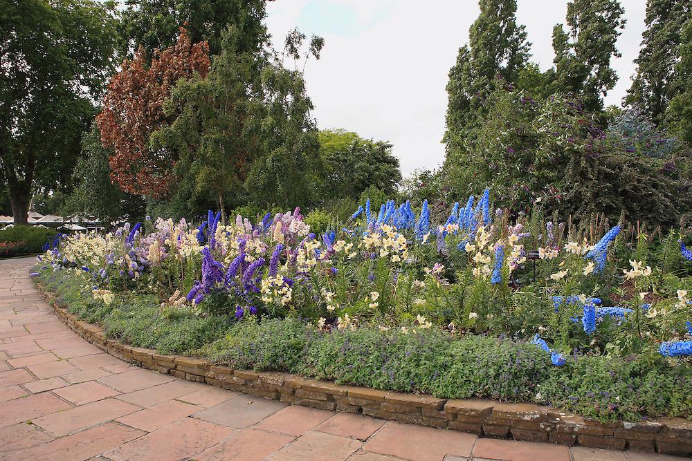 Regents Park Flower Garden - London, UK