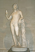 Sculpture of Bacchus (Dionysus) in Marble. The God of wine/Grape Harvesting. Circa 1st-3rd century AD. Roman.