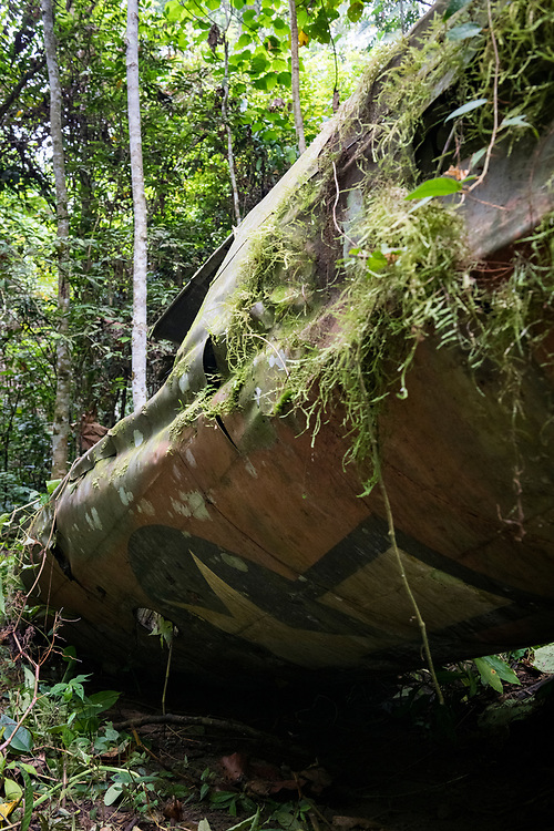On April 5, 1944, on the return from an attack on Japanese forces in Hollandia, the A-20 Havoc piloted by 2nd Lt. Thomas E. Freeman crashed into the jungle near the Clay River in what is now Papua New Guinea. The remains of the crew were recovered in 1967. Seventy-five years after the crash, the USAAF insignia is still visible on the fuselage.<br /> <br /> (June 21, 2019)