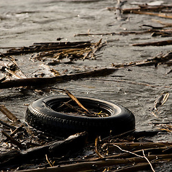 A tire floats in the Connecticut River just below McIndoes Falls and Dam in Monroe, New Hampshire.