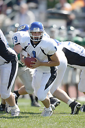 15 September 2007: Vince Palmer moves to his left in the pocket looking to make a hand off.  The Titans stood toe to toe with the 25th ranked Lions through the first half but ended the game on the losing end of a 25-15 score at Wilder Field on the campus of Illinois Wesleyan University in Bloomington Illinois.