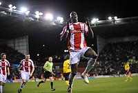 Fotball<br /> England<br /> Foto: Fotosports/Digitalsport<br /> NORWAY ONLY<br /> <br /> Stoke City v West Bromwich Albion Premier League 22.11.08 <br /> <br /> Mamady Sidibe Stoke City celebrates 1st goal
