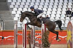 Van Den Broeck Tim, BEL, Parfait van het Schaeck<br /> Pavo Hengsten competitie - Oudsbergen 2021<br /> © Hippo Foto - Dirk Caremans<br />  22/02/2021