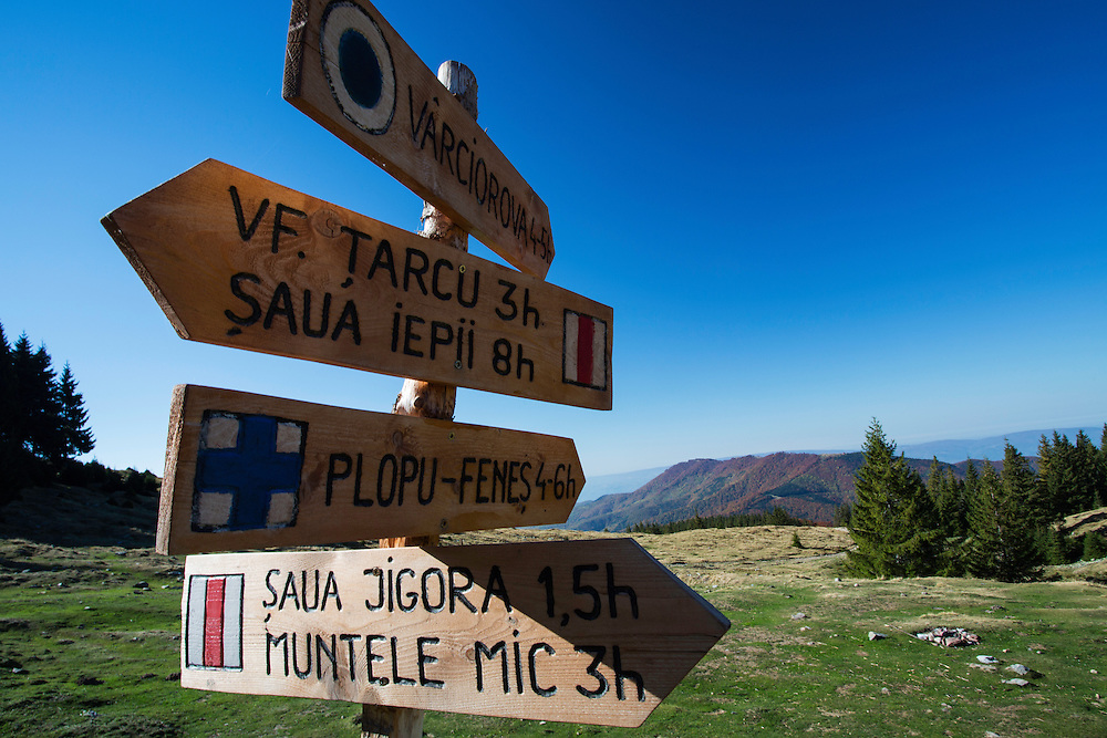 Wooden signposts for hiking trails in Tarcu Mountains Natura 2000 site at the Meteorological Station of Cuntu. Southern Carpathians, Munții Ṭarcu, Caraș-Severin, Romania.