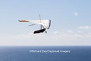 62995-00606 Hang Glider at Torrey Pines Gliderport La Jolla, CA