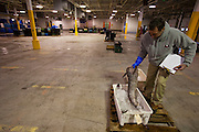 As an auction buyer, lobsterman Samuel Tucker examines sow hake in the nearly empty warehouse before the fish auction at Great Diamond Island, Maine. (From the book What I Eat: Around the World in 80 Diets.) The caloric value of his day's worth of food in March was 3,800 kcals. He is 50; 6 feet 1 and 1/2 inches and 179 pounds. Catches are increasingly sparse, and today's will require only a half hour to auction.