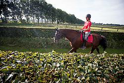 Van Grunsven Anky, (NED), Salinero<br /> Van Grunsven Stables - Erp 2015<br /> © Hippo Foto - Dirk Caremans<br /> 06/08/15