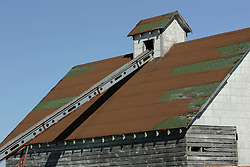 20 October 2007: a grain loader is mounted through the cupola of a corn crib.