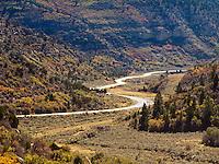 An autumn colored deciduous forest on Bureau of Land Management public land in the East Salt Creek canyon, Colorado, USA
