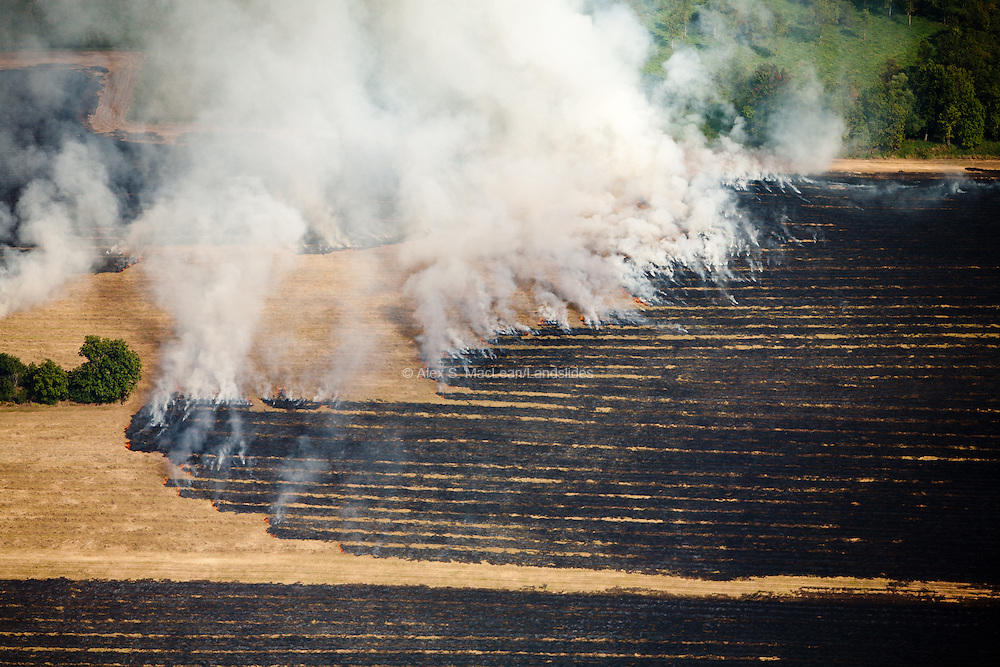 Agricultural Field Burning