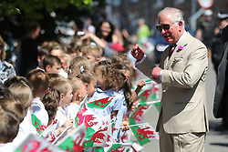 The Prince of Wales meets school children during a visit to Llangwm, in west Wales.