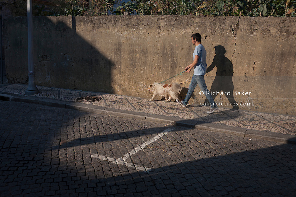 A dog owner walks his pet in the evening in Aveiro, Portugal.