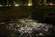 Belo Horizonte_MG, Brasil. ..Granizo na Praça da Liberdade, apos temporal em Belo Horizonte...Hail in the Praca da Liberdade, after the rain in Belo Horizonte...LEO DRUMOND / NITRO