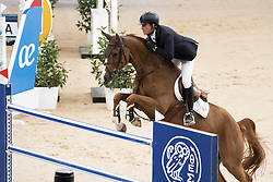 November 23, 2018 - Madrid, Spain - horseman competes during  CSI 5 Longines Global Champions in Madrid Horse Week at IFEMA in Madrid, Spain, 23 November 2018. Madrid Horse Week runs from 23 to 25 November 2018  (Credit Image: © Oscar Gonzalez/NurPhoto via ZUMA Press)