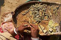 Inde, Bengale-Occidental, village de Baranagar repute pour ses temples en terre, fabrication de bidi // India, West Bengal, Baranagar village, famous for the clay temple, bidi maker