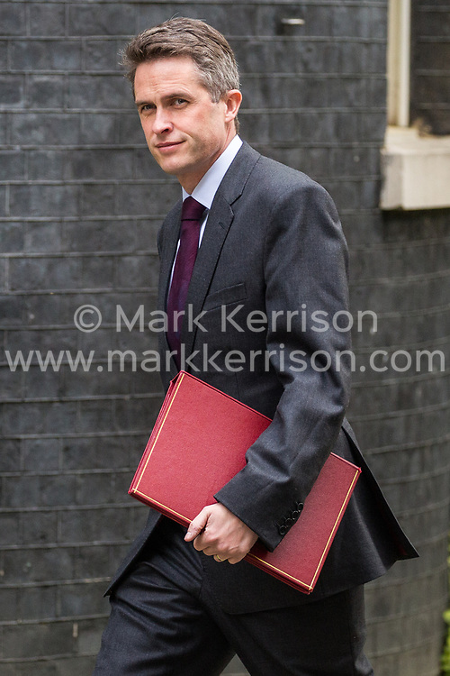 London, UK. 30th April 2019. Gavin Williamson MP, Secretary of State for Defence, arrives at 10 Downing Street for a Cabinet meeting.