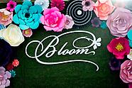 2019 SA Bloom