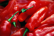 Close up selective focus photograph of Serrano hot chile peppers