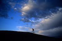 A mountain biker climbs a hill on the Slickrock Trail near Moab, Utah.
