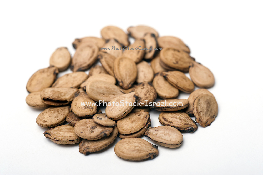 Roasted unshelled watermelon seeds On white Background