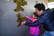 Kids Programs - Art & General Ambiance
