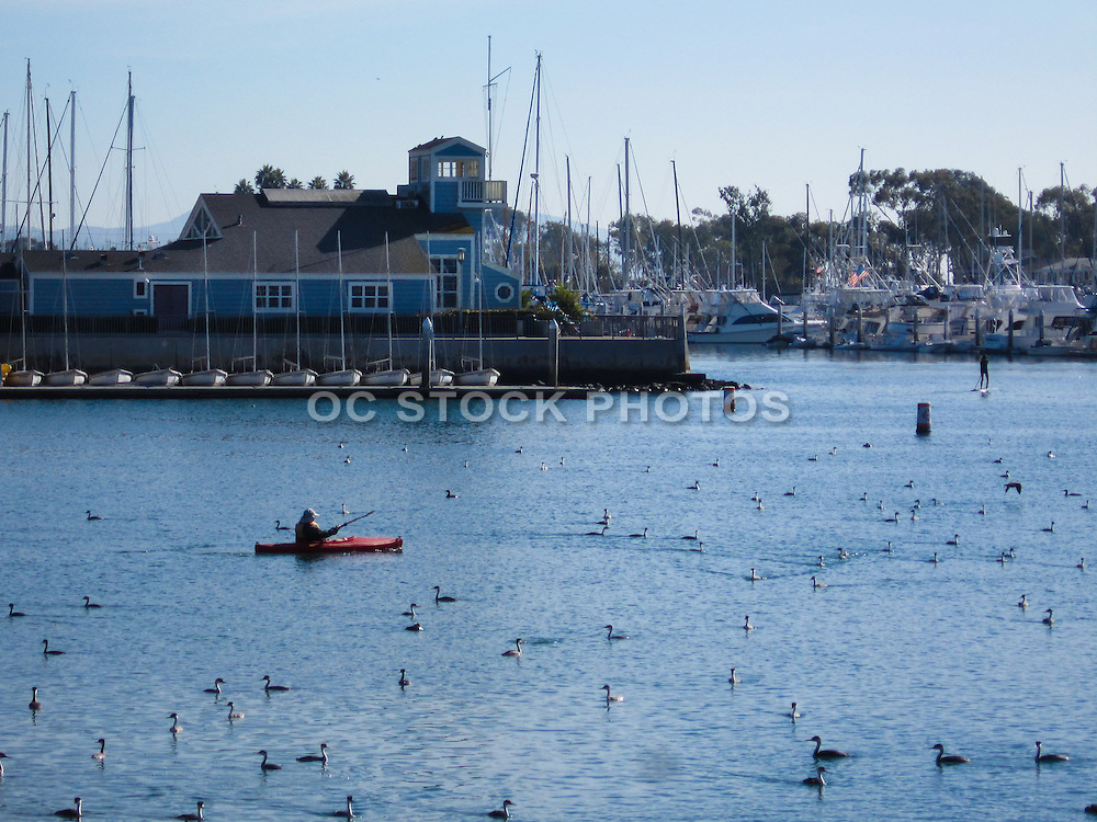Dana Point Harbor California