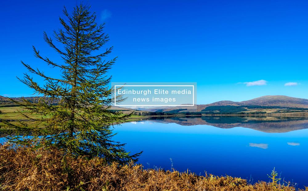 Autumn sunshine on Clatteringshaws Loch in the Galloway Forest Park, Dumfries & Galloway, Scotland<br /> <br /> (c) Andrew Wilson | Edinburgh Elite media