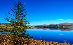 Autumn sunshine on Clatteringshaws Loch in the Galloway Forest Park, Dumfries & Galloway, Scotland<br /> <br /> (c) Andrew Wilson   Edinburgh Elite media