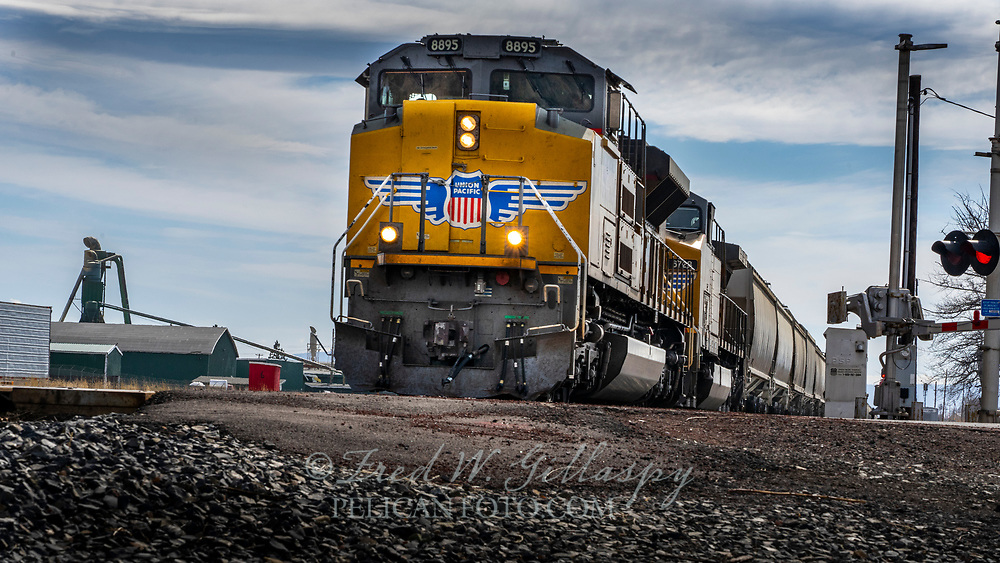 Fast moving northbound Union Pacific 8895 leading a lengthy run of hoppers that appeared to be empty, racing through the tiny town of Dorris, CA. Located between Mt. Shasta and the Oregon border, it's a city in the Butte Valley, Siskiyou County with a booming population of 939 according to the 2010 Census. The rail line was formerly operated by the Southern Pacific Railroad, which named the town in 1907 after livestock owners, Presley A. and Carlos J. Dorris. The Dorris brothers raised stock in Little Shasta in the 1860s before moving to what became known as Alturas, CA in 1876.