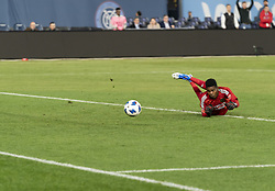 October 31, 2018 - New York, New York, United States - Goalkeeper Andre Blake (18) of Philadelphia Union watches ball going into net courtesy David Villa of NYCFC (not pictured) shot during knockout round game between NYCFC & Philadelphia Union at Yankees stadium NYCFC won 3 - 1  (Credit Image: © Lev Radin/Pacific Press via ZUMA Wire)