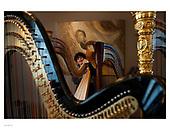 arielle valibouse | harps