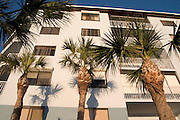 Palm trees casting shadows on the condominiums which overlook Gulf of Mexico.  Indian Shores Tampa Bay Area Florida USA