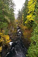 The Englishman River downstream of the Upper Falls in Englishman River Falls Provincial Park near Nanaimo, British Columbia, Canada.