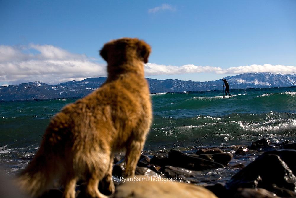 Winter Paddle on Tahoe
