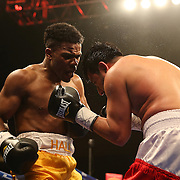 """Marcus Hall (yellow shorts) defeats Rafael Luna during the undercard match of the ESPN """"Boxcino"""" boxing tournament at Turning Stone Resort Casino on Friday, April 18, 2014 in Verona, New York.  (AP Photo/Alex Menendez)"""