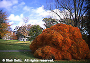 Scott Arboretum of Swarthmore College, Philadelphia gardens, Delaware Co., PA