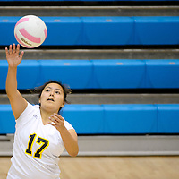 111413  Adron Gardner/Independent<br /> <br /> Newcomb Skyhawk Kayenne Begaye (17) serves to the Hatch Valley Bears during the state volleyball tournament at Cleveland High School in Rio Rancho Thursday.
