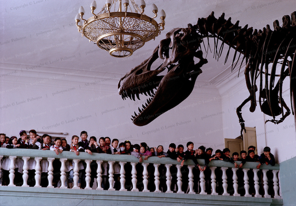 A  class tour stands admires a Tarbosaur display in the Ulan Bator State Museum in Mongolia.  Related to Tyrannosaurus, a family which is a cross-cultural crowd pleaser.<br /> A  class tour stands admires a Tarbosaur display in the Ulan Bator State Museum in Mongolia.  Related to Tyrannosaurus, a family which is a cross-cultural crowd pleaser.<br /> A school boy on a class tour stands proud with a sauropod femur on display at the Ulan Bator State Museum in Mongolia.