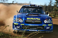PERTH, AUSTRALIA - NOVEMBER 12:  Chris Atkinson of Australia and the Subaru World Rally Team in action during Rally Australia, which is Round 16 of the FIA World Rally Championships November 12, 2005 in Mundaring near Perth, Australia.  (Photo by Paul Kane/Getty Images) *** Local Caption *** Chris Atkinson