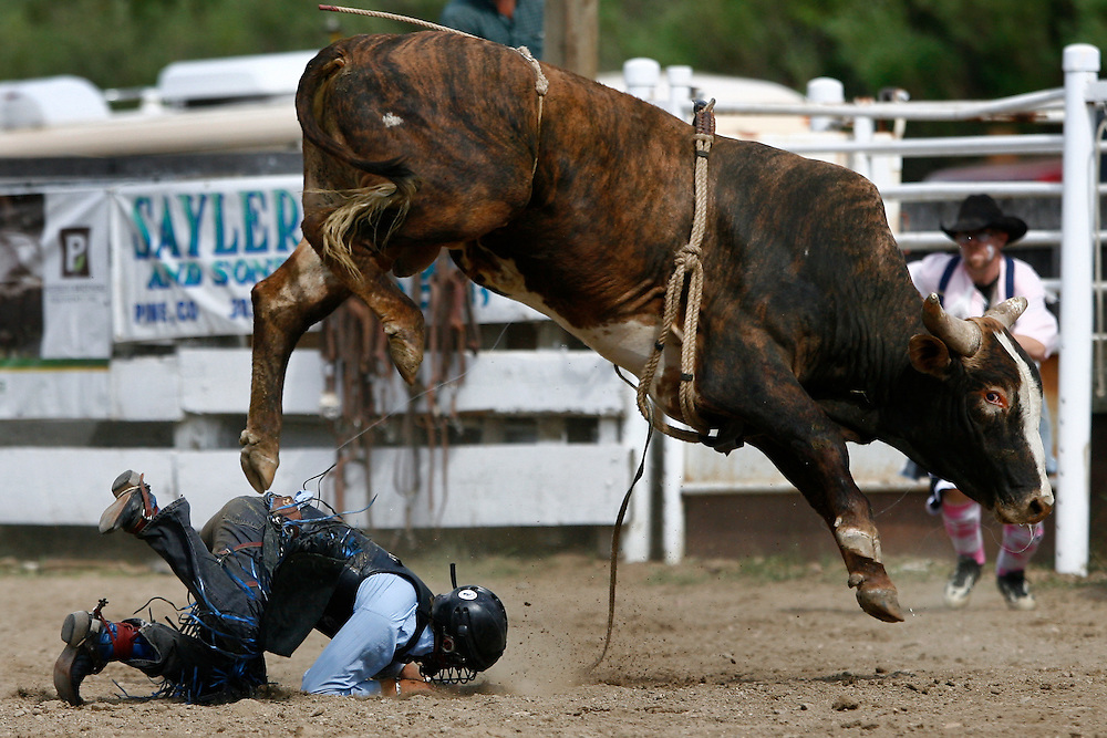 061811-Evergreen, COLORADO-evergreenrodeo-Bull rider John Herman, of Gillette, WY, is thrown to the ground during the Evergreen Rodeo Saturday, June 18, 2011 at the El Pinal Rodeo Grounds..Photo By Matthew Jonas/Evergreen Newspapers/Photo Editor