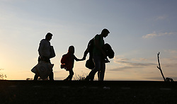 © London News Pictures. Migrants cross the border into Hungary from Serbia close to the  border town of Roszke, Hungary, September 8 2015. The UN's humanitarian agencies are on the verge of bankruptcy and unable to meet the basic needs of millions of people because of the size of the refugee crisis in the Middle East, Africa and Europe, senior figures within the UN have told the media.   Picture by Paul Hackett /LNP