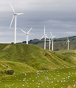 """Tararua Wind Farm is the largest wind power installation in the Southern Hemisphere. It is located 10 kilometres northeast of the city of Palmerston North, on a 5 kilometre long ridge in the Tararua Ranges, on the North Island of New Zealand. Humans have migrated to the ends of the earth to cut farms from virgin forests and compete for new resources, such as here in the South Pacific. Published in """"Light Travel: Photography on the Go"""" by Tom Dempsey 2009, 2010."""