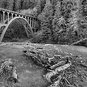 Oregon Coast (B/W)