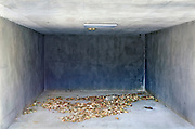 empty garage with leaves