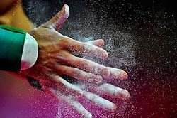 Olympics: Gymnastics, London, 28.07.2012.Philipp Boy (GER).www.sportida.com