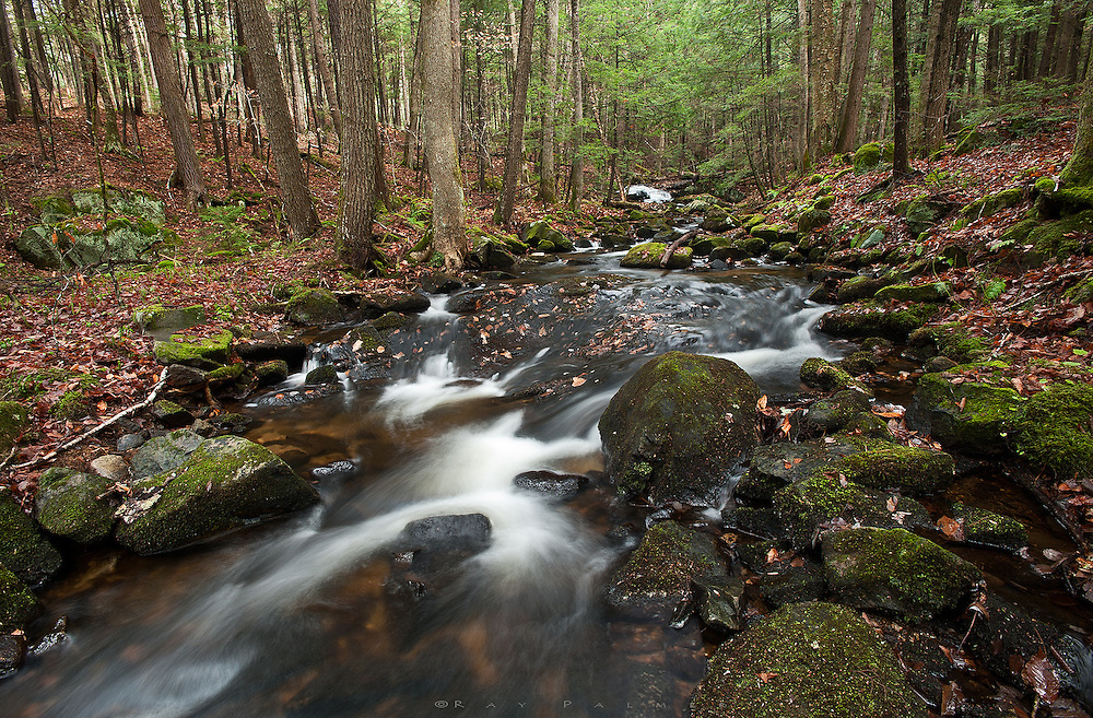 Adirondacks, NY.<br /> The forecast for the Noth country was partly sunny, so I took off hoping for good things after a night of rain.  But the system stalled, and partly sunny remained mostly cloudy.  So, stream photography.  The trail to Spectacle Pond is a great woods walk, never far from the brook. I paused here and let the brook come at me awhile, stretching out in a bit of a run down the slope.  We lose ourselves in places like these, mezmerised by the water, shaken out of it by a shiver from the damp of a November day.  Moving is relief.