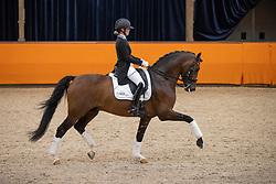Van Vliet Renate, NED, In Style<br /> Fotodag KWPN Hengstenkeuring 2021<br /> © Hippo Foto - Dirk Caremans<br /> 06/01/2021