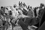 SENEGAL. Saint Louis. 30/01/1986: Catch of the day for sale on the beach.